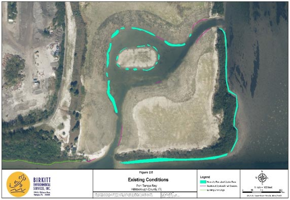 Port Tampa Bay – Oyster Mitigation Relocation